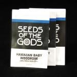 Altered State Leiden - Hawaiian Baby Woodrose